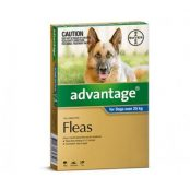 advantage_Extra_Large_Dog_393e0460-5c57-4490-aa75-b5213b04456f-1